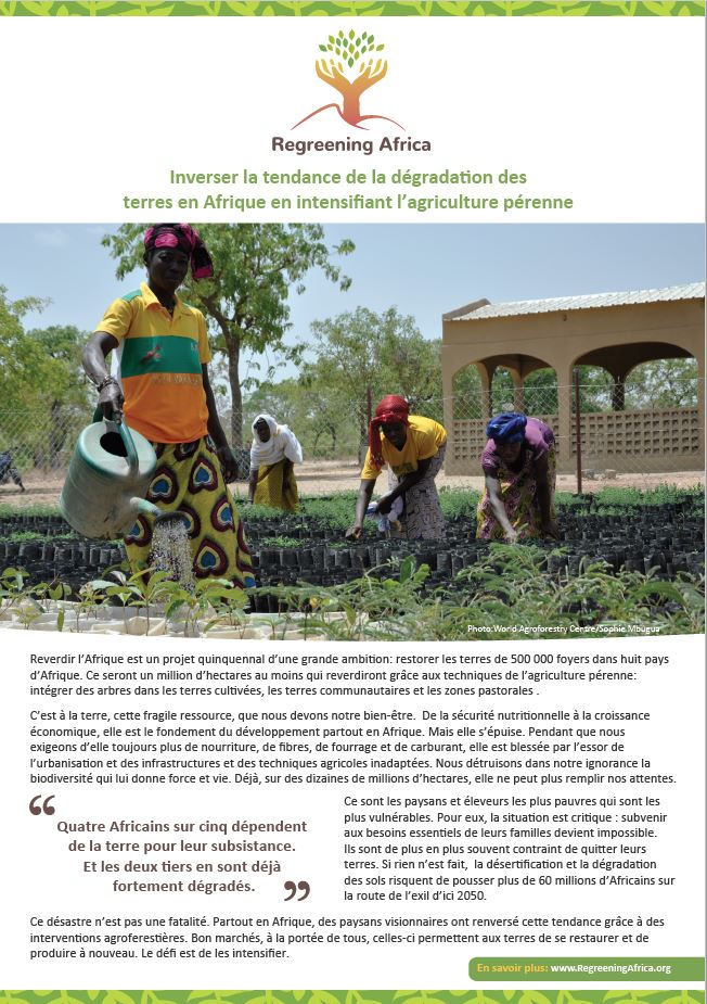 Regreening Africa – Project Flyer (French)