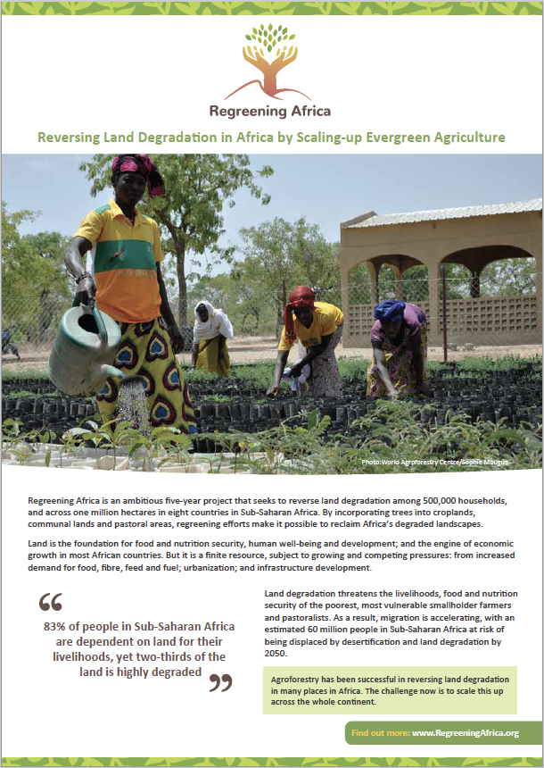 Regreening Africa – Project Flyer (English)