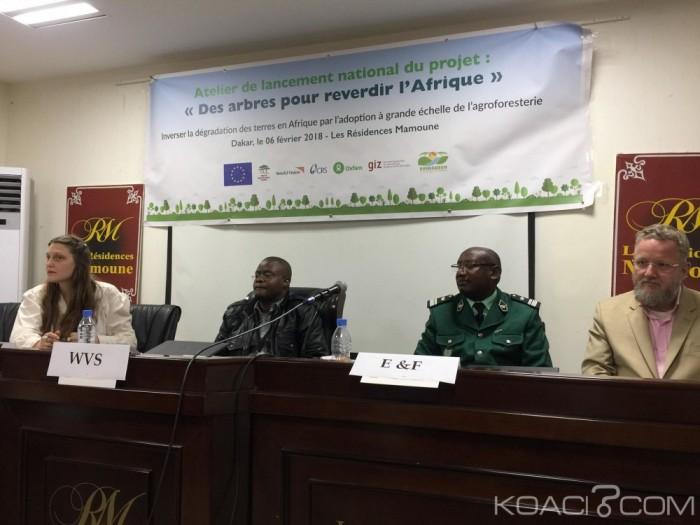 Afrique: Environnement, le projet «des arbres pour reverdir l'Afrique» lancé dans 8 pays