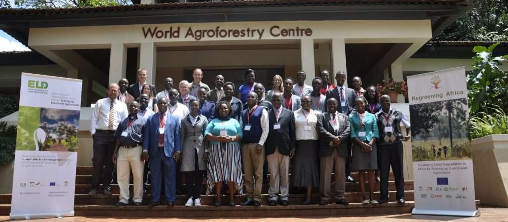 Assessing opportunities for sustainable land management in Africa: A cost-benefit approach in eight countries
