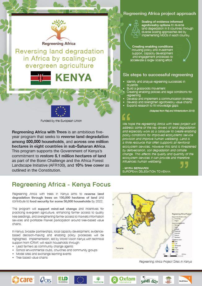 Regreening Kenya with Trees