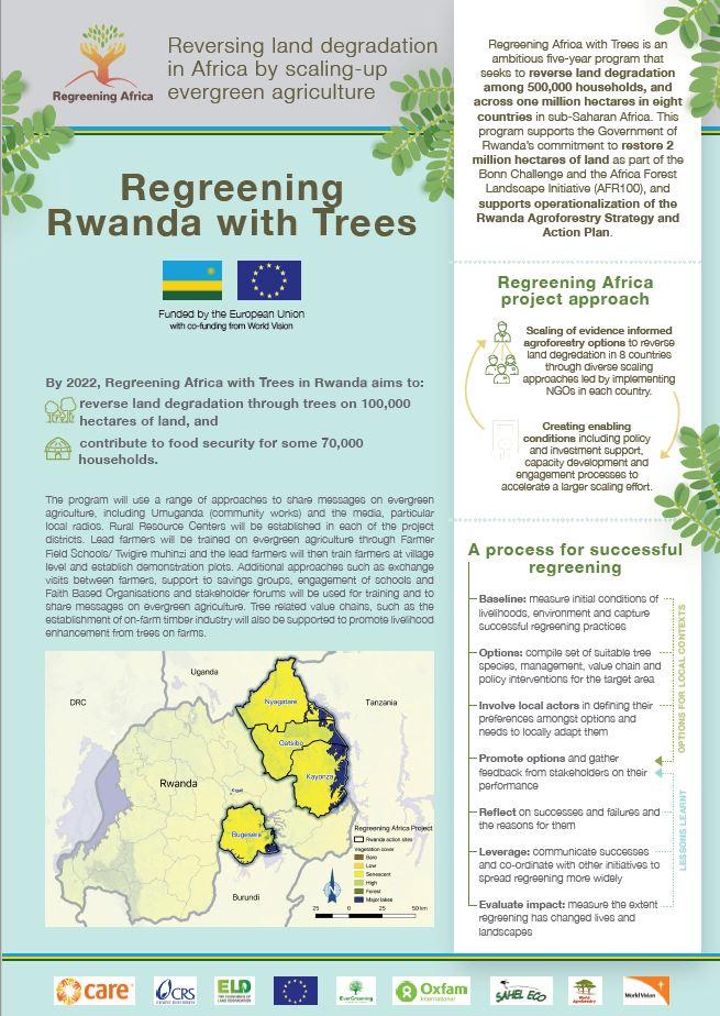 Regreening Rwanda with Trees
