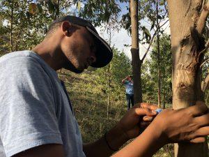 Using the Land Degradation Surveillance Framework to assess land health in Rwanda