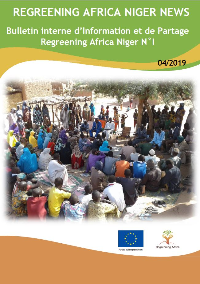 Regreening Africa – Niger News