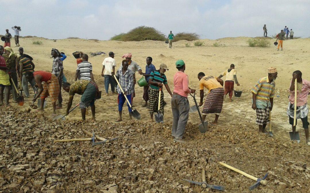 Regreening activities kick off in Somalia!