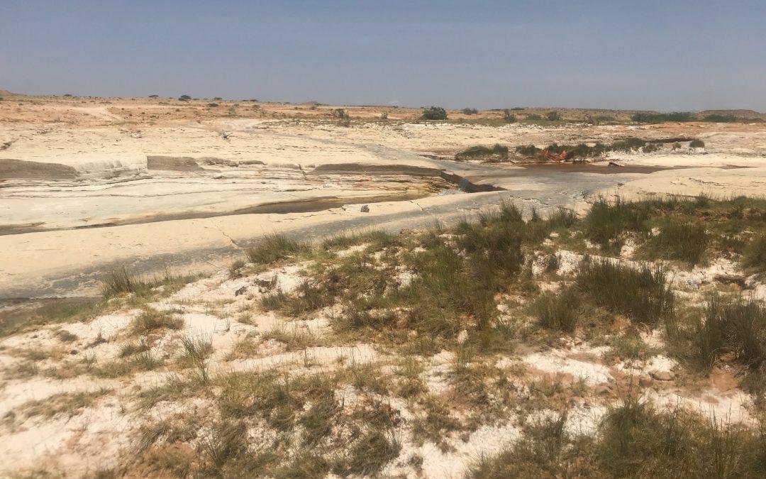 Puntland: restoring land and livelihoods