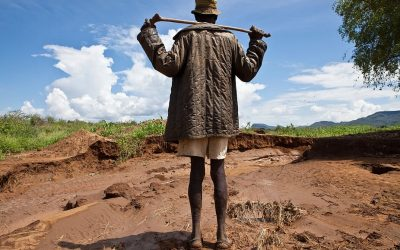Key insights into land degradation from seven African countries