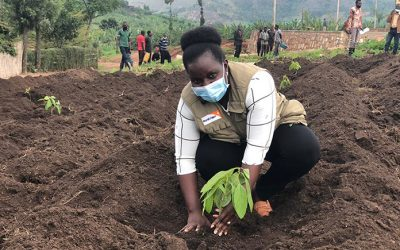 World Vision Rwanda commits to plant over 7 million trees
