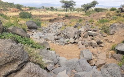 Ethiopia's 'engagement landscape': hope for the future