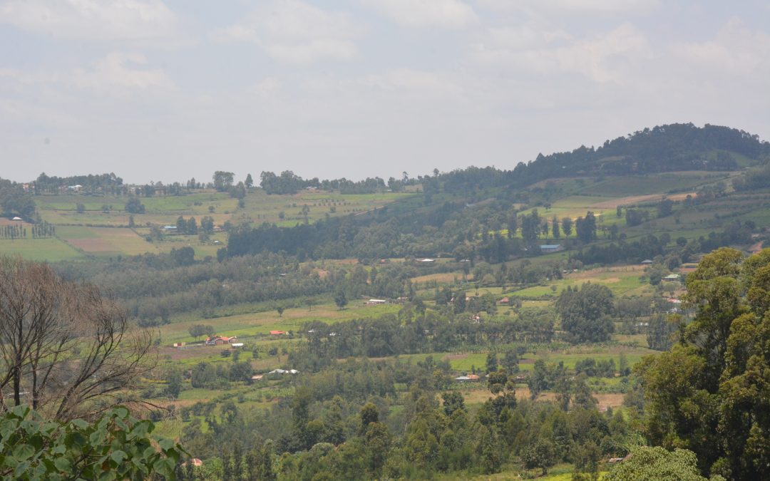 Kenya comes together to restore landscapes