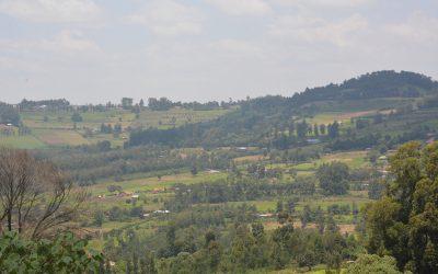 Kenya comes together to restore landscapes
