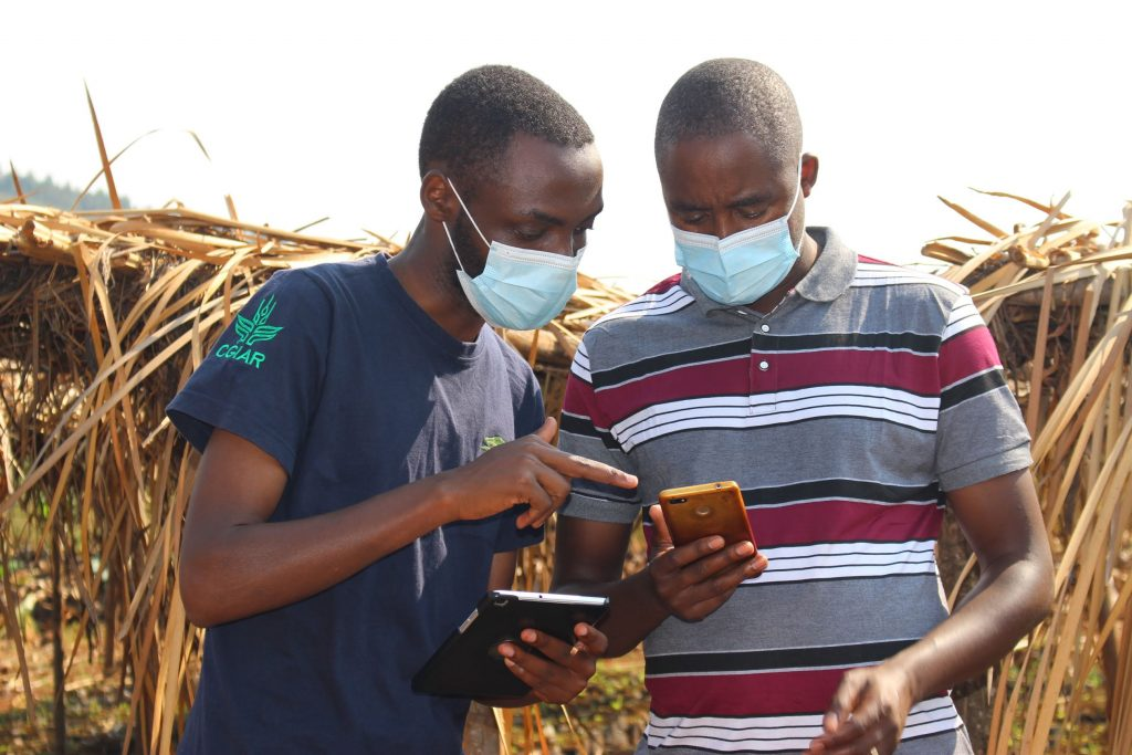 A mobile application helps African farmers manage and restore their land