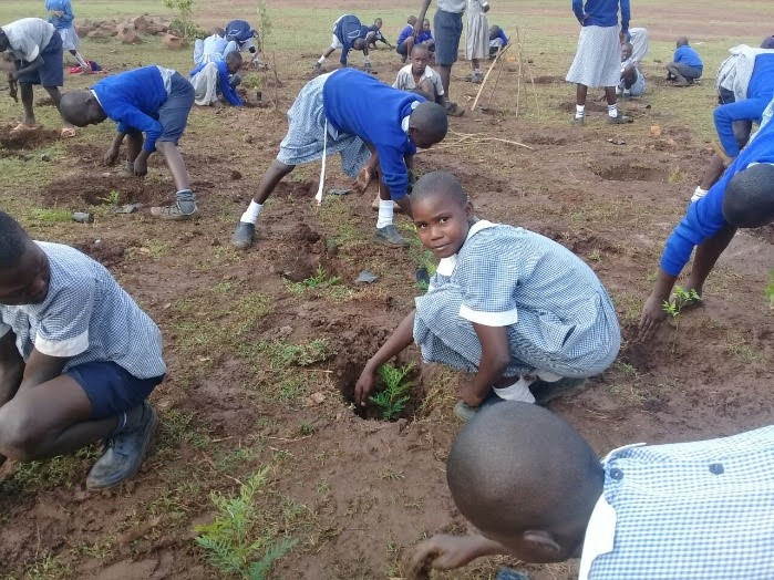 Private sector contributes to Kenya's land restoration