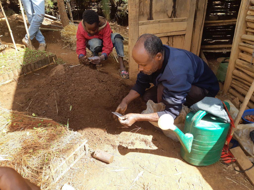Livelihood diversification through tree-based enterprises